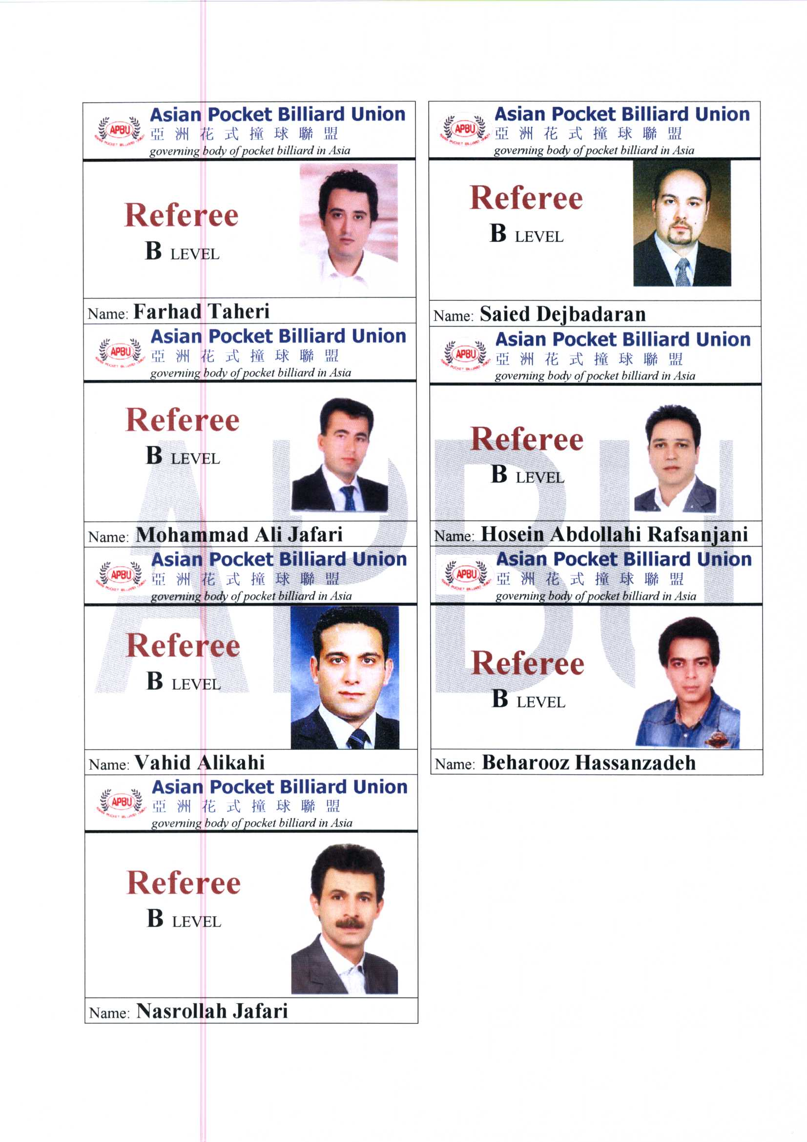 Iran 2011 referee B License